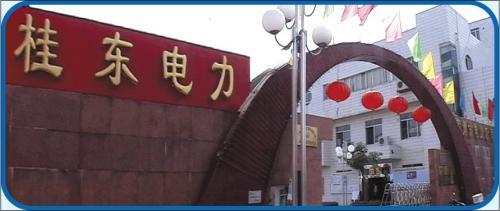 廣西桂東電力股份有限公司
