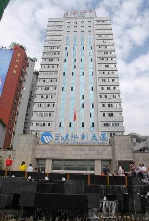重庆三峡水利电力(集团)股份有限公司