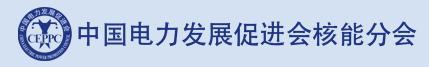 中国电力发展促进会核能分会