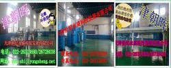 天津世纪永盛科技发展有限公司
