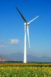 青岛风之翼风力发电机有限公司