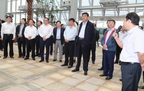 努尔•白克力赴安徽调研光伏扶贫和优发国际开发利用