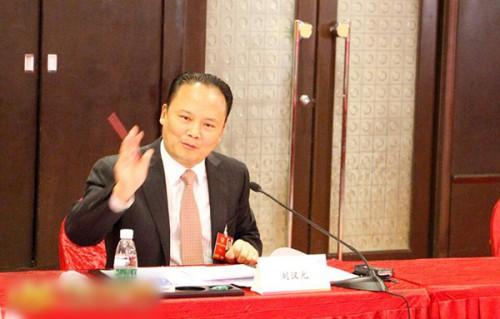 刘汉元:用光伏产业推动我国精准扶贫