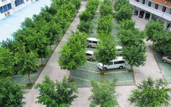 董恒宇委员表示绿色低碳战略要因地制宜