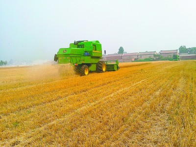 北京发展农作物秸秆综合利用5途径