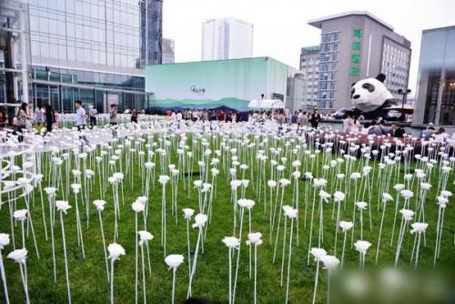 成都闹市七夕前点亮25000朵LED玫瑰