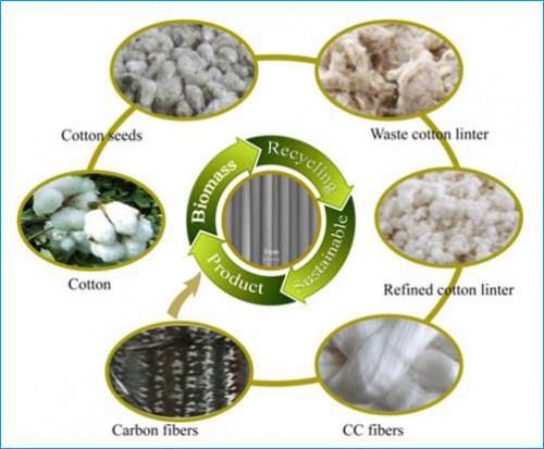 新疆理化所在制备生物质基碳纤维研究方面取得进展