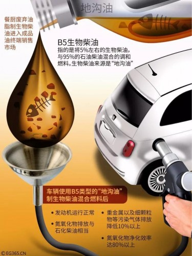 上海'喝'地沟油的车还好吗?