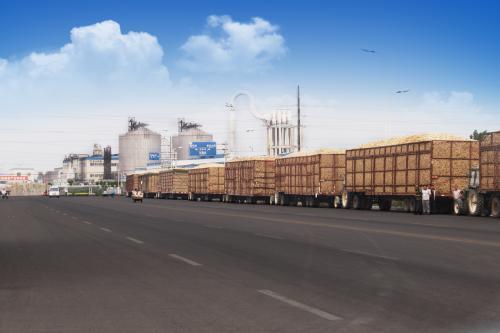 龙力生物已完成10万吨燃料乙醇可研,抢滩乙醇汽油蛋糕