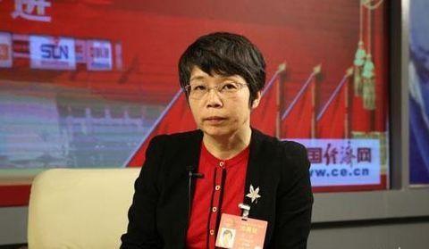 赵萍:系统降本促风电高质量开发
