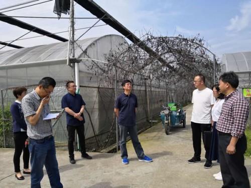 浙江省农业生态能源办调研衢州沼气安生产和沼液利用工作