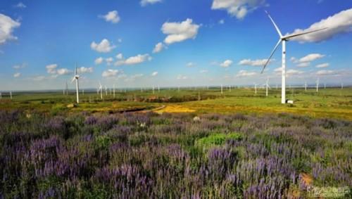 为何可再生能源配额制总差'临门一脚'?
