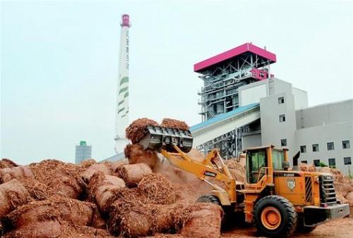 荆州利用秸秆发电减排效益明显