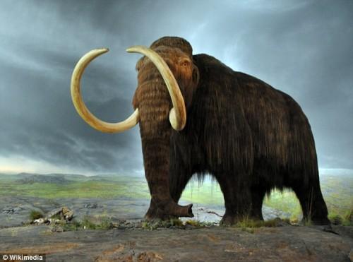 想要抑制全球变暖 科学家称复活猛犸象是一招
