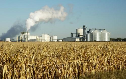 特朗普宣布取消E15燃料乙醇禁令