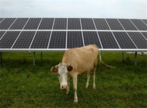 俄罗斯向欧洲出口太阳能电池板