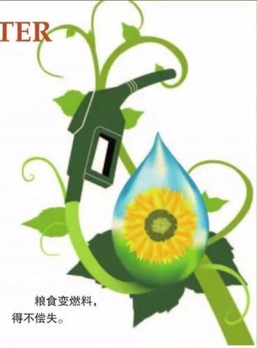 生物燃料或是个骗补贴的泡沫