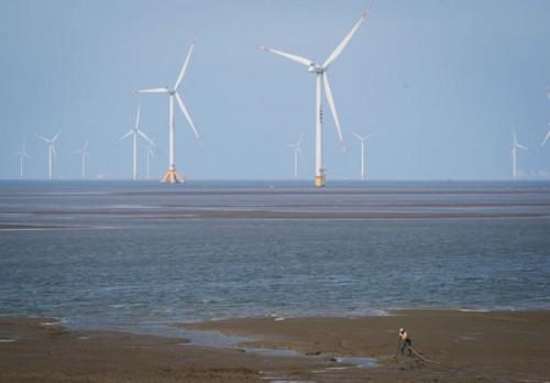 我国海上风电成本将持续走低