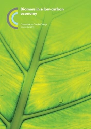 最新报告发现:生物质能在英国能源生产中将发挥更大作用