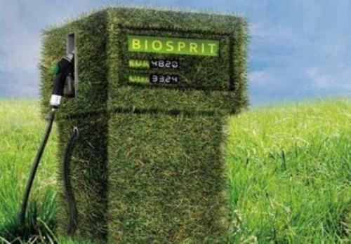APPA声称生物燃料是西班牙能源计划的关键组成部分