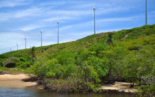 巴西的风电装机容量超过14.3吉瓦