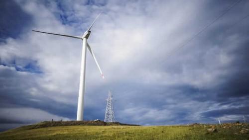 风电'竞价'转型期 行业如何精耕细作?
