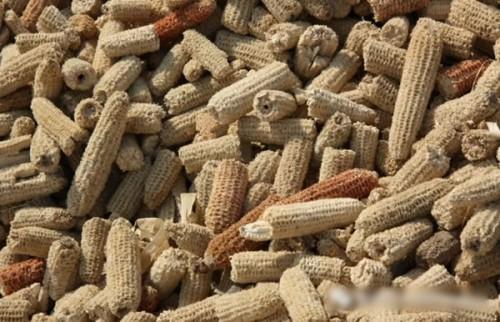 龙力生物循环利用玉米芯变废为宝