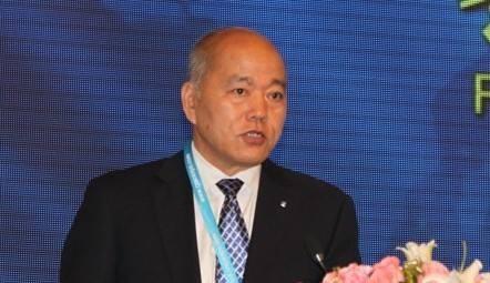 王斯成:光伏利好信号频发 技术创新推进平价新时代