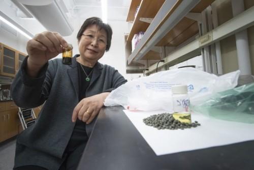 塑料垃圾变废为宝:科学家将其变成燃料来源