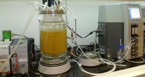 一种简单的创新方法可以快速的将餐厨垃圾转化为氢能