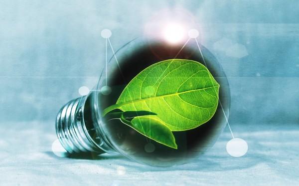 國際能源署:對能源轉型至關重要的6種礦產