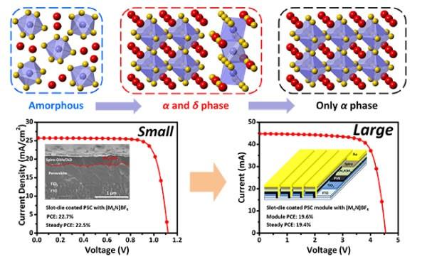 大连化物所制备出高效率大面积钙钛矿太阳组件电池