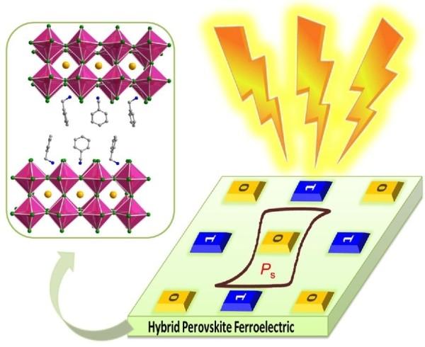 福建物构所高性能层状杂化钙钛矿铁电半导体研究获进展