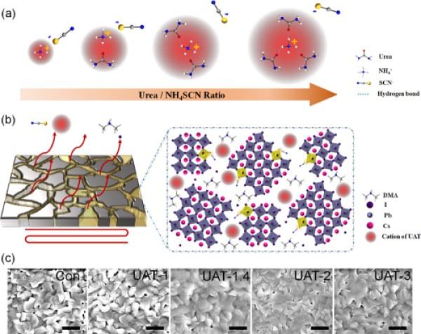 全无机钙钛矿太阳能电池研究取得进展
