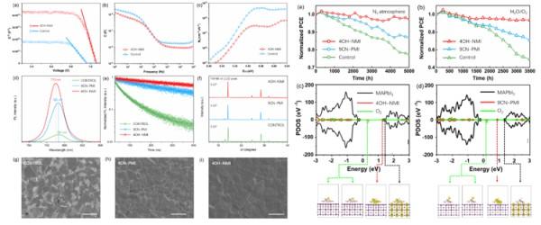 福建物构所在钙钛矿太阳能电池研究获进展