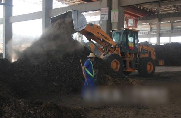 郓城废弃秸秆成赚钱的香饽饽 专访生物质能源经济