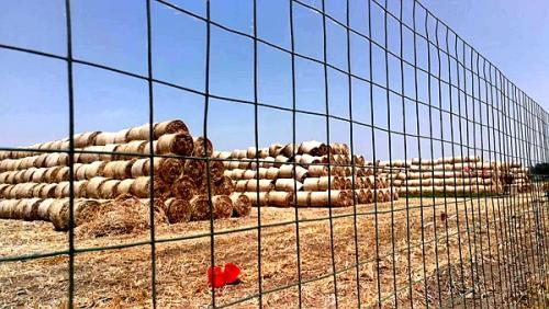 秸秆发电助农业 安徽亳州市众力农业添彩创能源