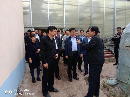 济宁市泗水县组织部秦明部长一行 到访海德光伏农业园区参观考察