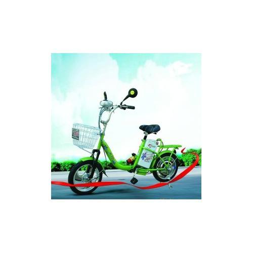 小轮车牌电动自行车