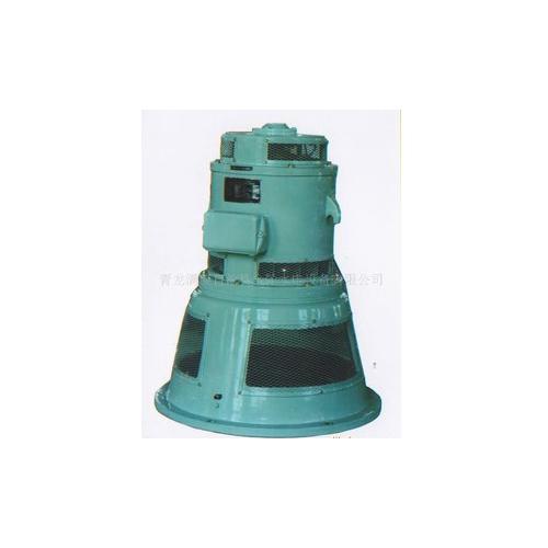 立式水轮发电机