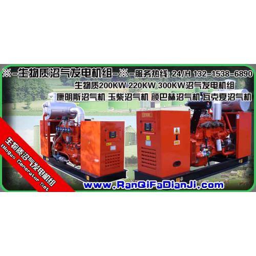 康明斯沼气发电机组,沼气发电脱硫