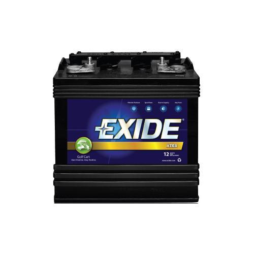 EXIDE电动观光车电池