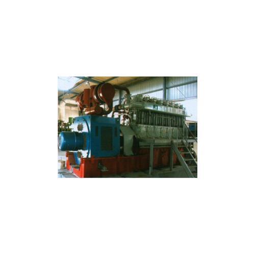 300系列沼氣發電機組