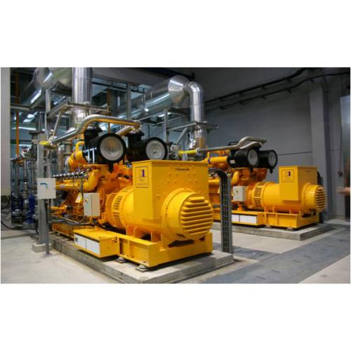 高斯科爾沼氣發電機組