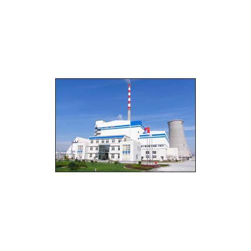 振动炉排生物质锅炉