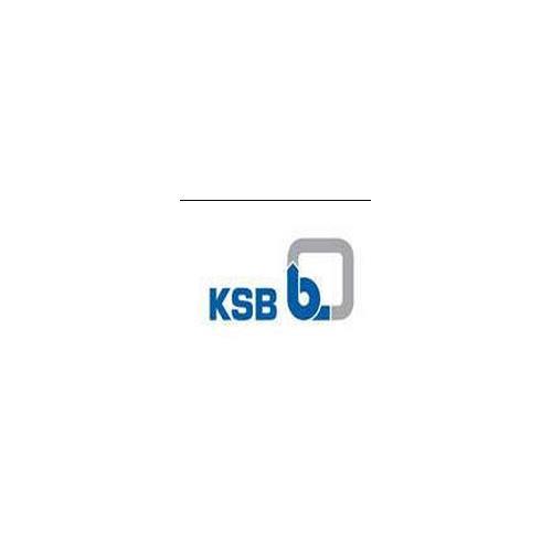 德国KSB(凯士比)阀门(ETACHROM BC 032-160)_上海达琼流体科技有限公司_