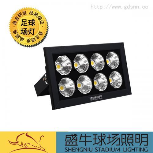 7人足球场照明灯