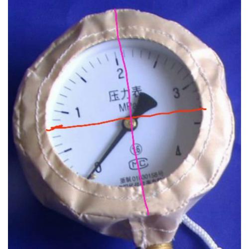 特氟龙压力表保护罩