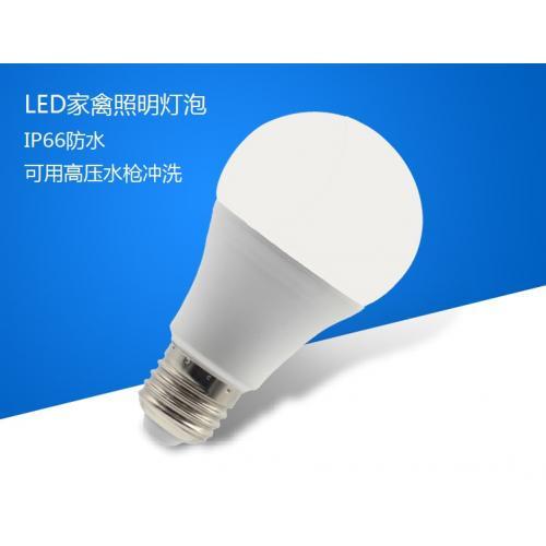 养鸡场用LED养鸡灯