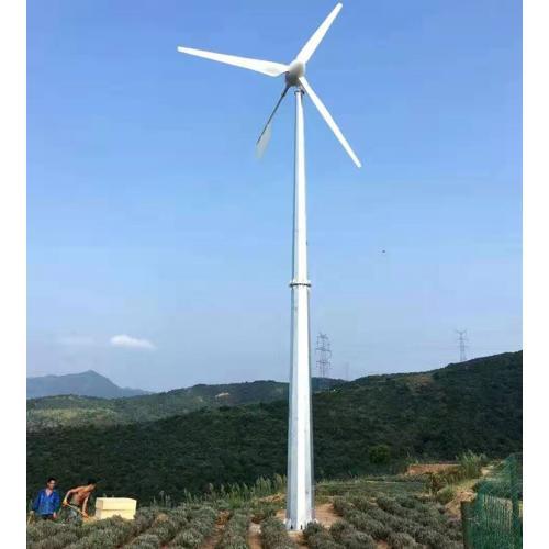 永磁風力發電機自制發電機